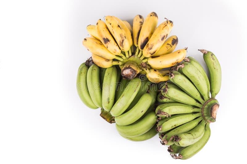 三束在白色backgroun的有机绿色和黄色香蕉 库存图片