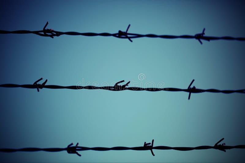 三条铁丝网线和浅兰的背景 免版税图库摄影