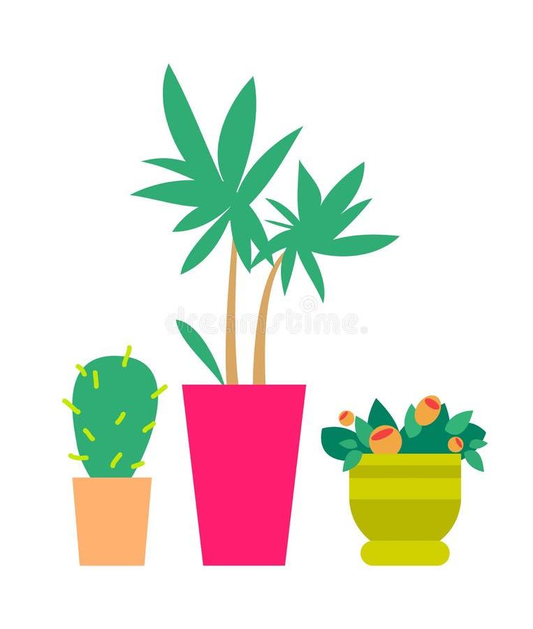 三棵逗人喜爱的植物颜色横幅传染媒介例证 库存例证