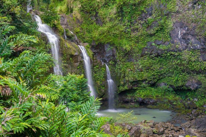 三瀑布在一个热带森林里 图库摄影