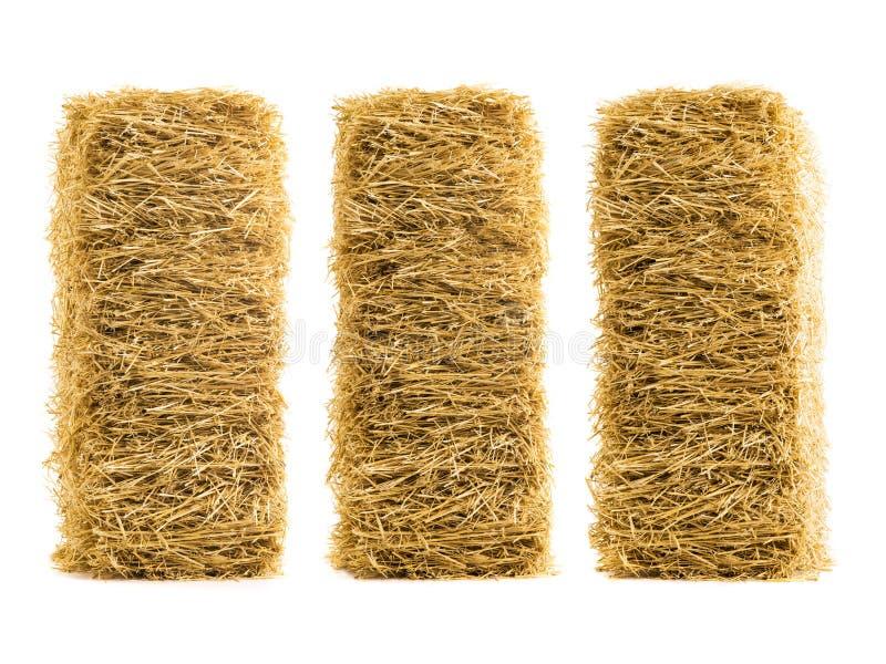 三被隔绝的干燥干草堆 库存照片