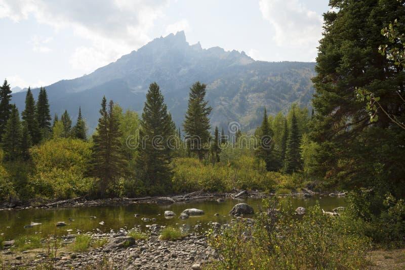从三角叶杨小河,杰克逊Hole,怀俄明的Teton山 免版税库存图片