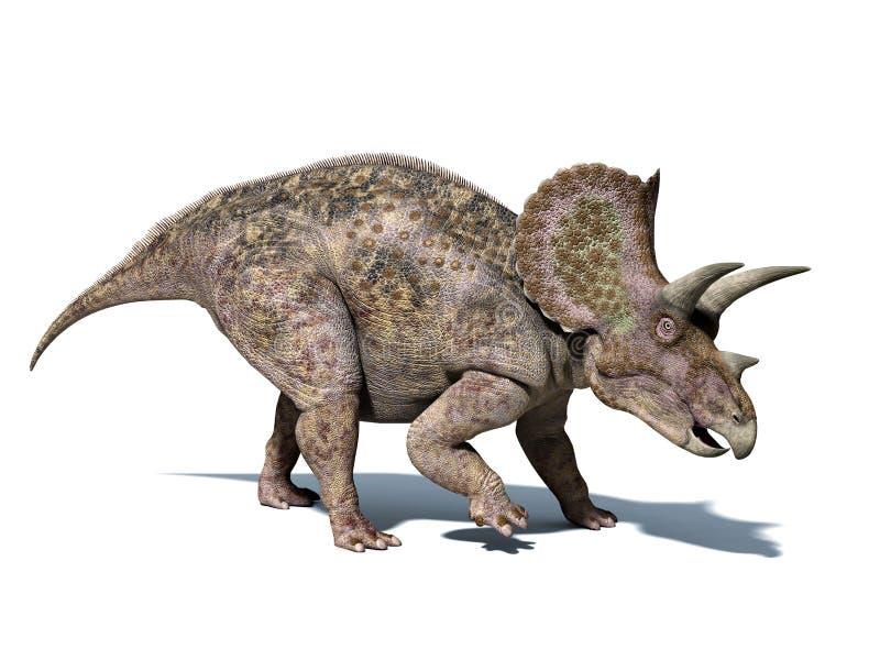 三角恐龙恐龙,被隔绝在白色背景,与裁减路线。 库存例证