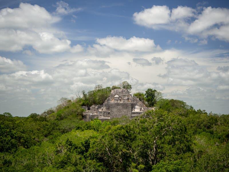 上升在密林机盖外面的古老玛雅石结构在 库存图片