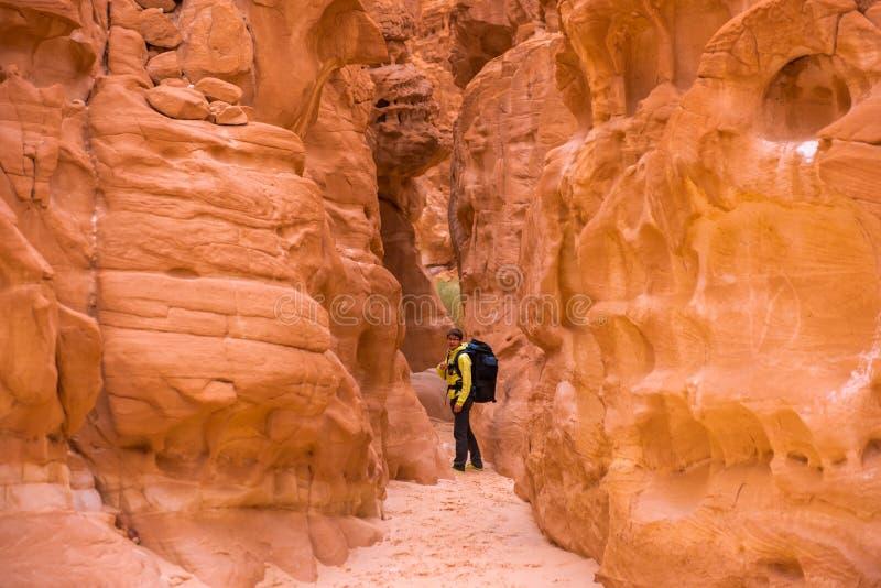 上升在峡谷,西奈,埃及的妇女 免版税库存图片