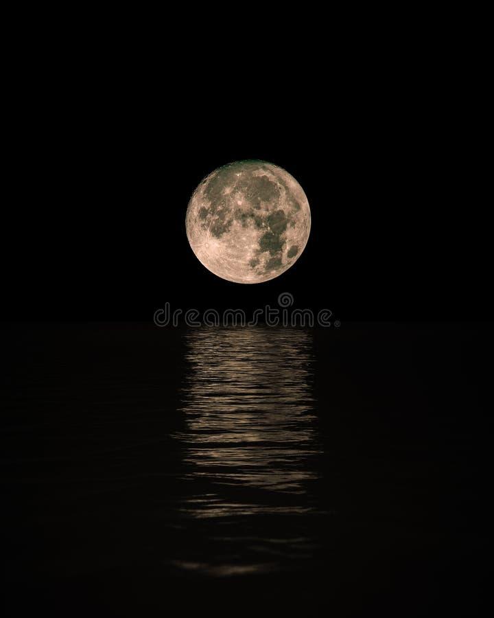 上升在有v医生的风平浪静的满月在水,vertica.熊二医生当娃娃图片
