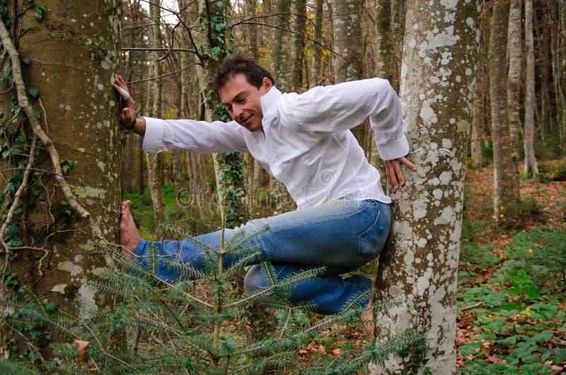 上升在树的人 免版税库存图片