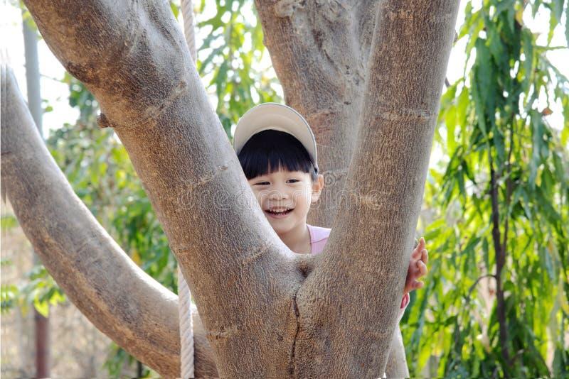 上升在树的微笑的男孩 免版税库存照片