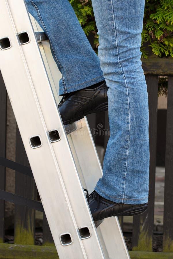 上升在梯子的女工在庭院里 免版税库存照片
