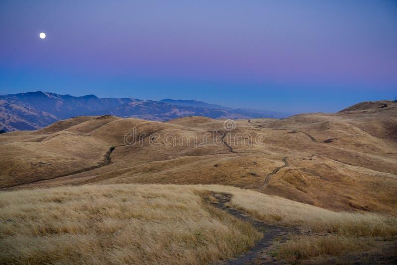上升在金黄小山的满月,如被看见从使命峰顶,旧金山湾区,加利福尼亚 库存照片