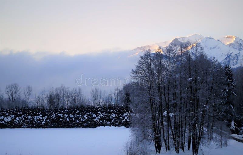 上升在雾上的阿尔卑斯 库存照片