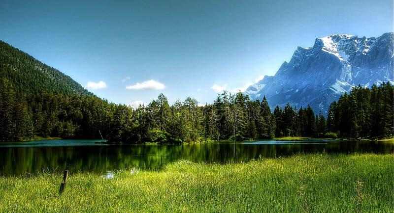 上升太阳和有些树与山 免版税库存照片