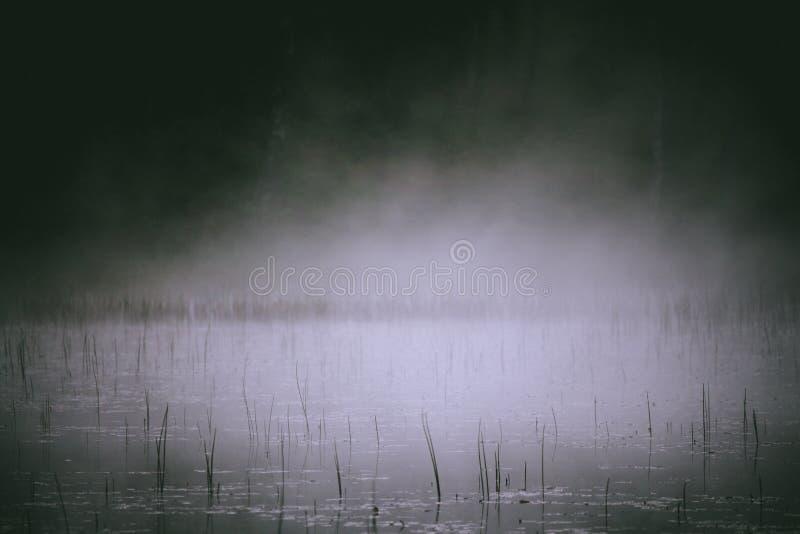 上升湖的清早薄雾 免版税库存照片