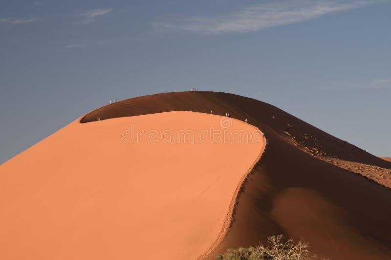 上升的人们,沙丘45,一Sossusvlei,纳米比亚伟大的沙丘  库存照片