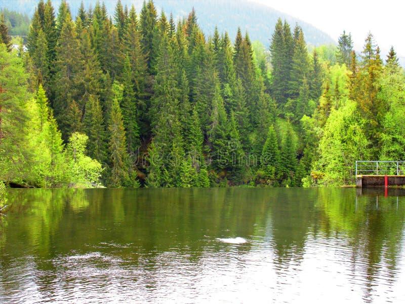 上升!这里在土地结束安静的河,得到及时 库存图片