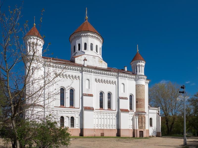上帝的纯净的母亲的大教堂 立陶宛维尔纽斯 免版税库存图片