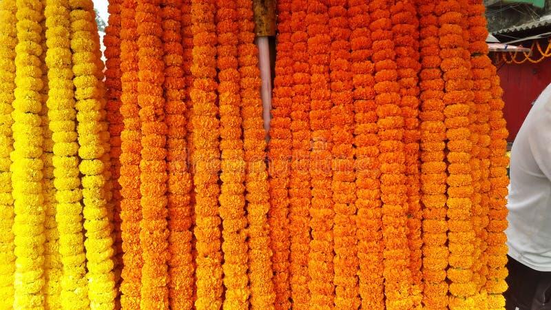 上帝的被标记的黄色万寿菊花能崇拜 库存照片