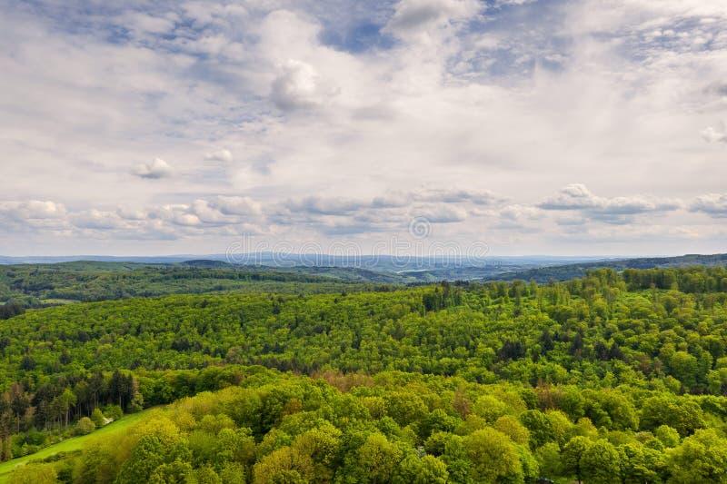 上方郁郁葱葱的绿色森林景观 库存照片