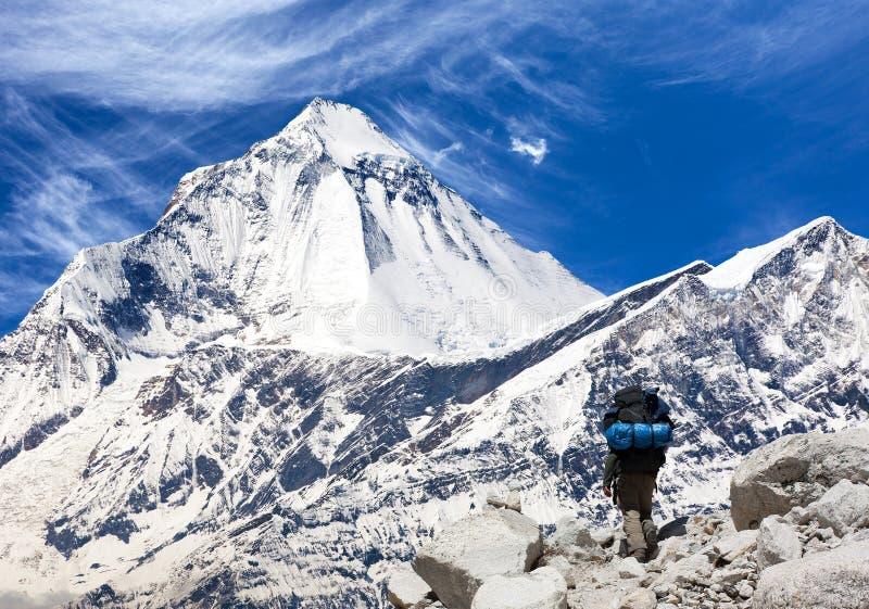 男子生殖器愺-�{��Z[7X��hY��_登上有游人的,伟大的喜马拉雅足迹道拉吉里峰