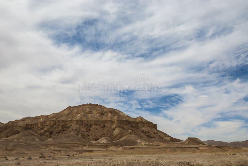 登上沙漠 免版税库存图片
