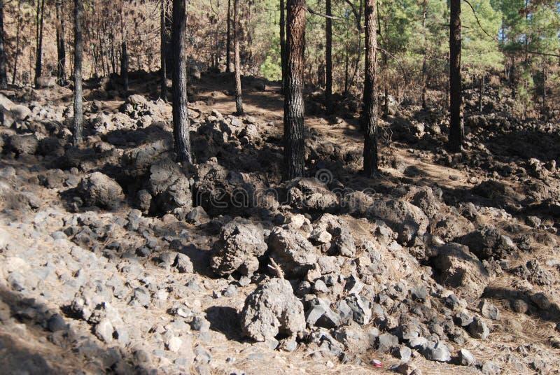 登上泰德峰在特内里费岛的火山 库存照片