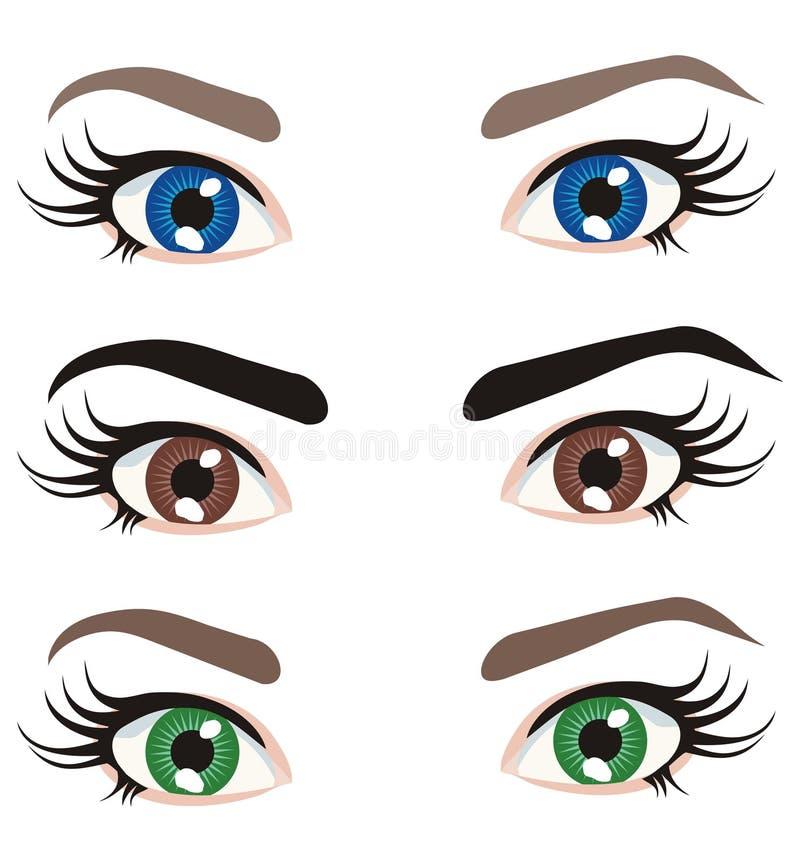 上色不同的眼睛 向量例证