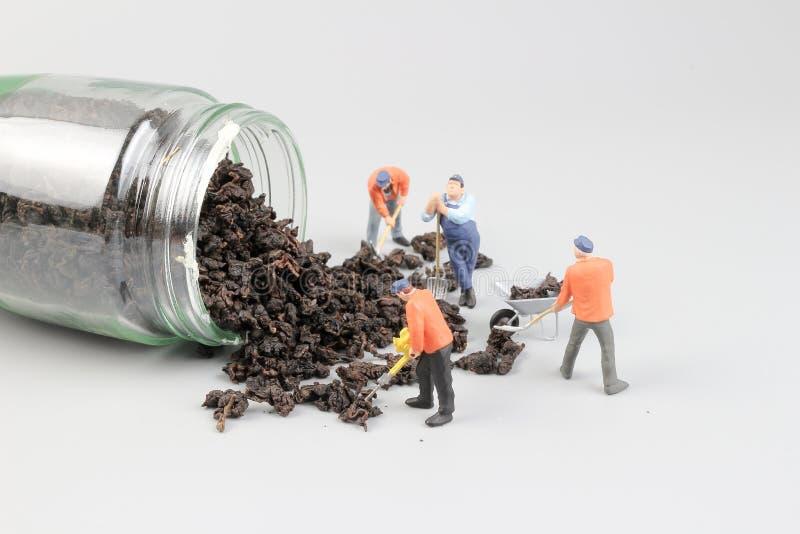 上色茶的微型画家 图库摄影