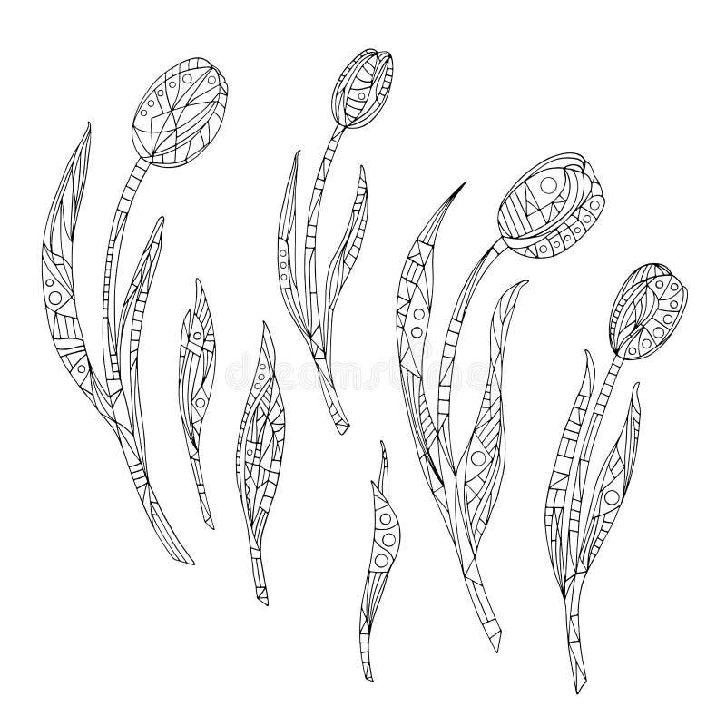 上色页的郁金香 手拉的抽象花传染媒介例证 在现代样式的自然背景 库存例证