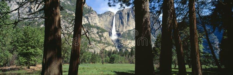 上部和更低的优胜美地瀑布在春天,加利福尼亚 免版税图库摄影