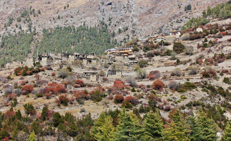 上部Pisang/村庄在陡峭的小山的尼泊尔 免版税库存照片