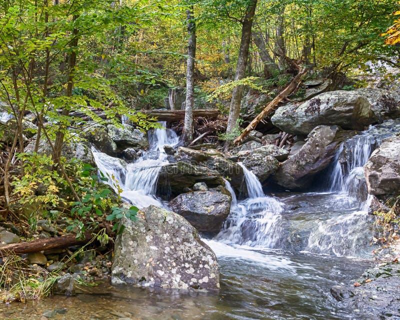上部Whiteoak秋天,地平线驱动, Shenandoah国家公园, VA 免版税图库摄影