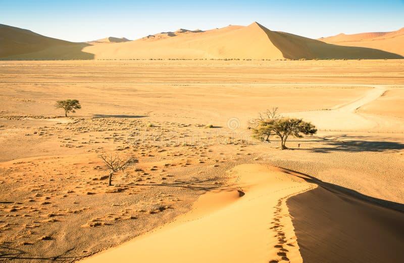 上面在途中的沙丘45对Sossusvlei纳米比亚 免版税库存图片