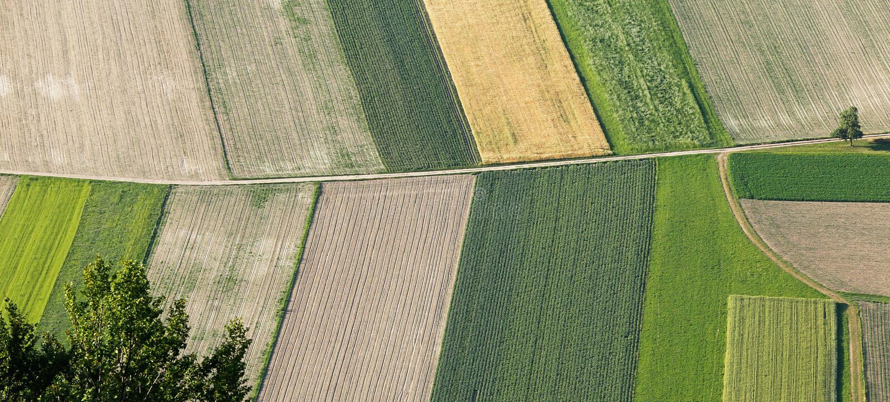 从上面新近地被犁的和被播种的农场土地 免版税库存照片
