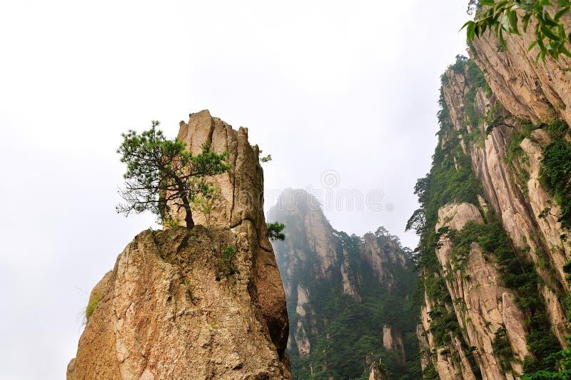 登上黄山西海大峡谷,难以置信的瓷 库存图片