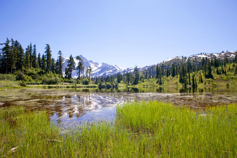 登上从Picture湖的Shuksan视图 免版税库存照片