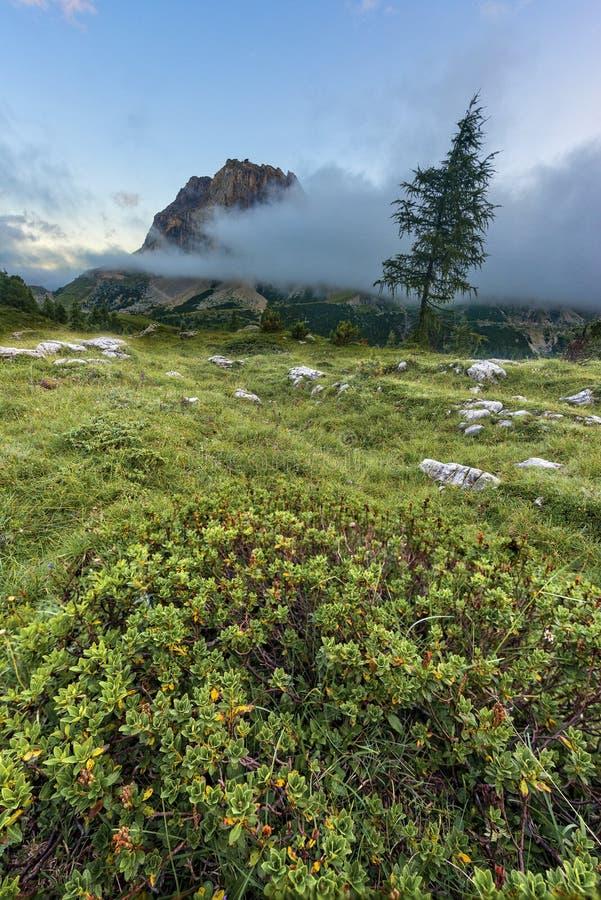 登上Averau在与云彩和雾, Falzarego通行证,白云岩,意大利的日落 免版税库存照片