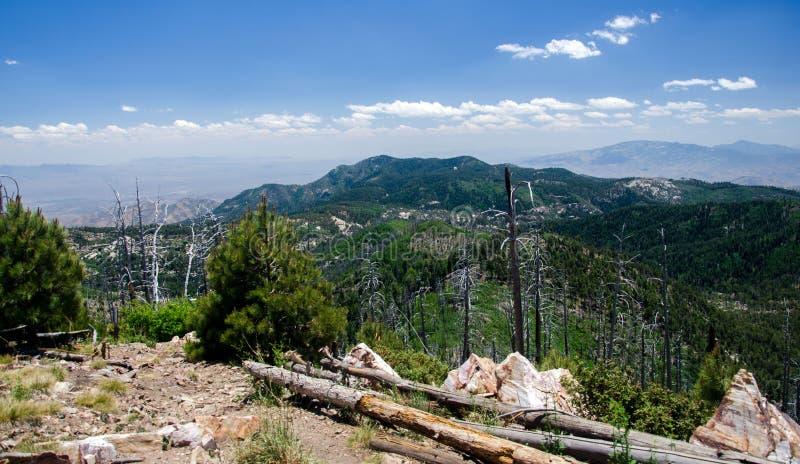 从登上Lemmon图森亚利桑那的沙漠山 库存图片