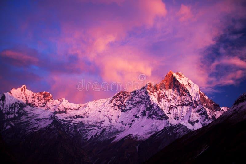 登上Machapuchare (摆尾)在日落,尼泊尔 免版税库存照片