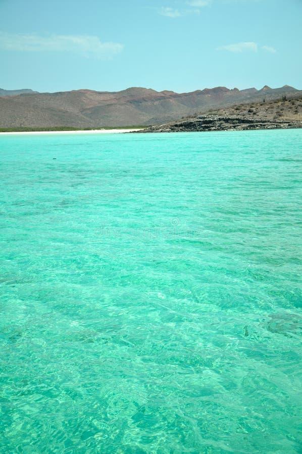 下加利福尼亚州和科尔特斯它的海是一个天堂的snorkelers和潜水者,而且的企业联合毒品交易  免版税库存照片