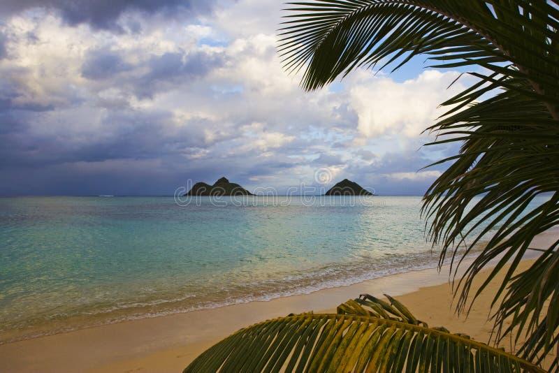 下午后海滩lanikai 免版税库存照片