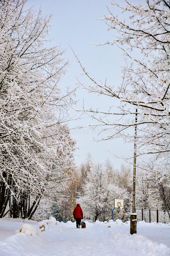 下午冻结的山腰杯子overlookiing的海运热水瓶冬天 免版税库存照片