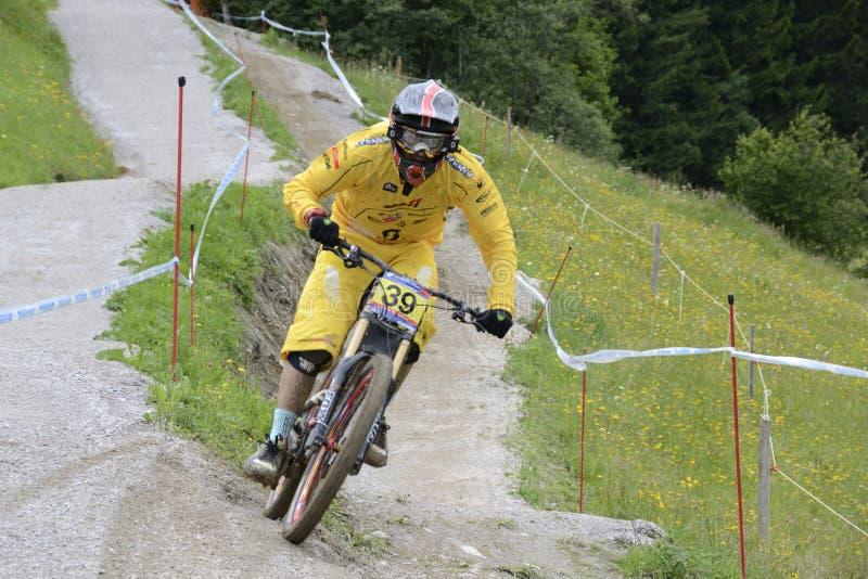 下坡mountainbike 库存图片