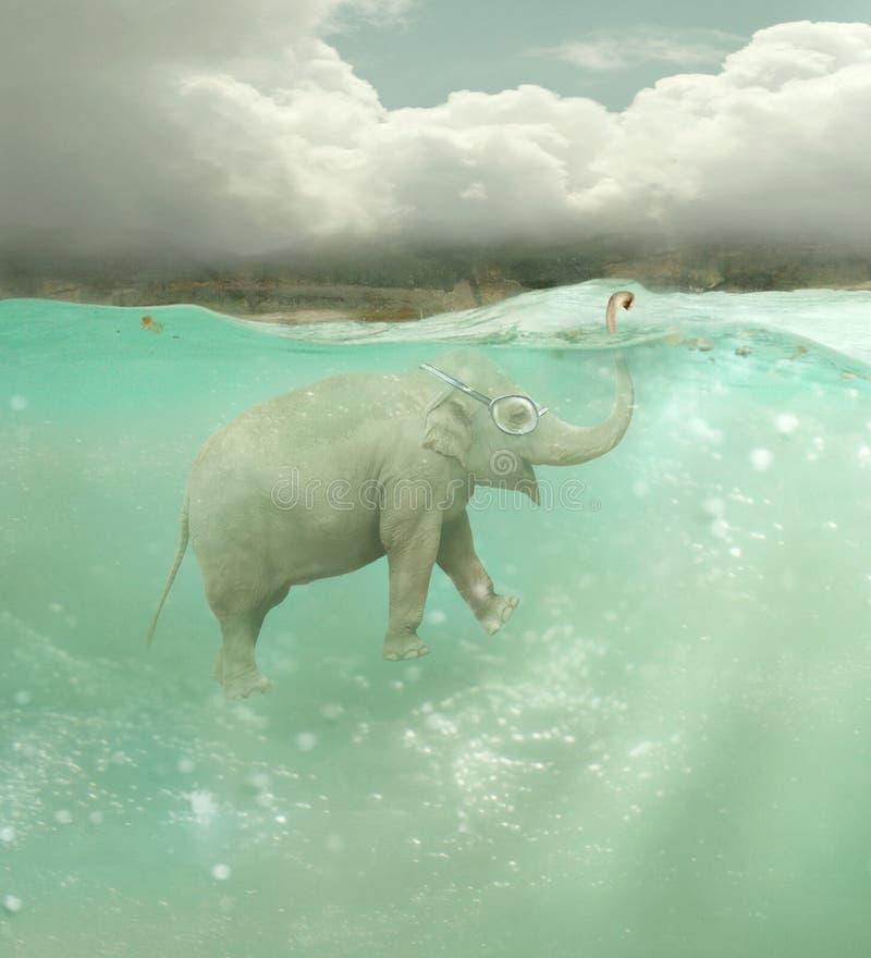 水下大象 库存例证