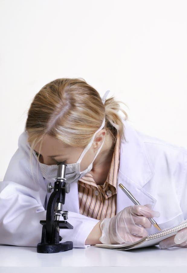 下显微镜 免版税库存图片