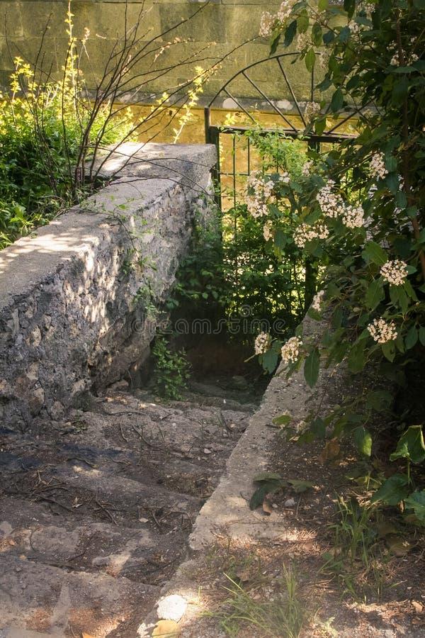 下来克里米亚沃龙佐夫宫殿公园老台阶到门 免版税库存照片