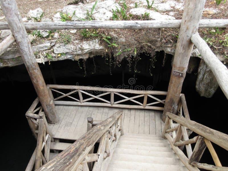 下来入Cenote 免版税库存图片