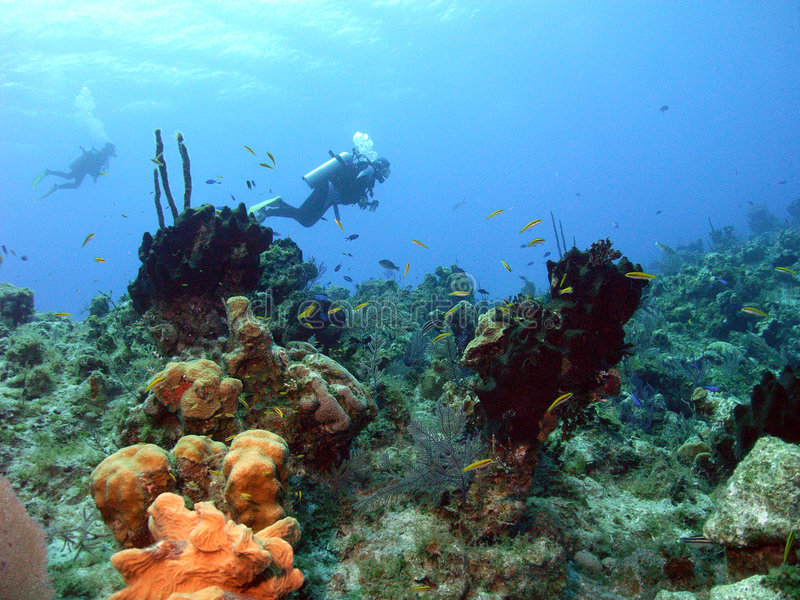 下来潜水员 免版税图库摄影