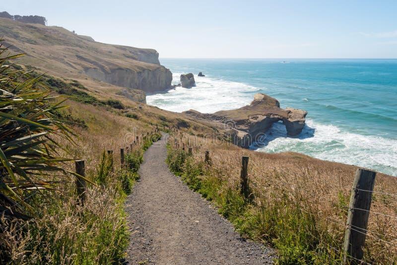 下来道路对在隧道海滩,达尼丁,新西兰的自然曲拱 免版税库存照片