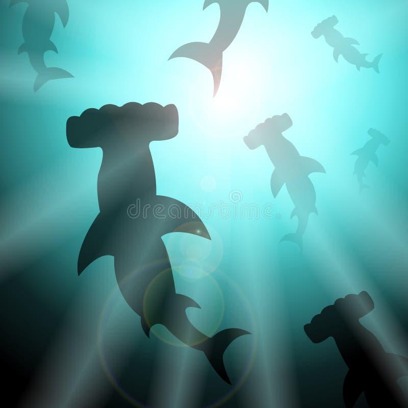 水下的双髻鲨 皇族释放例证