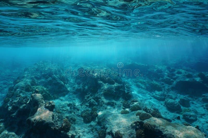水下的海表面明白水岩石海底 免版税图库摄影